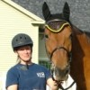 Andover Business Owner Helps Horses in Distress