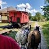 Granite State Carriage Association Held Annual Driving Event