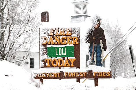 Just for Fun: Forest Fire Danger is Low