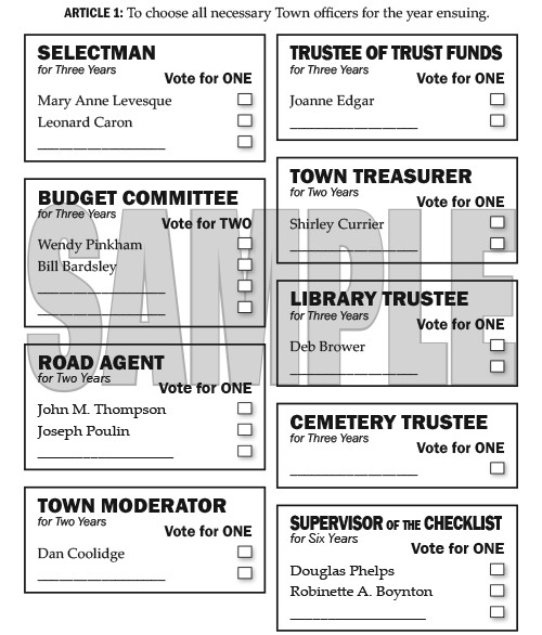 Election Ballots for Tuesday, March 11, 2014