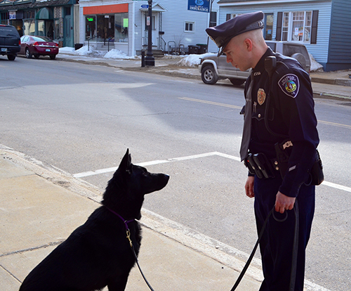 New K9 Cop on the Beat in Franklin