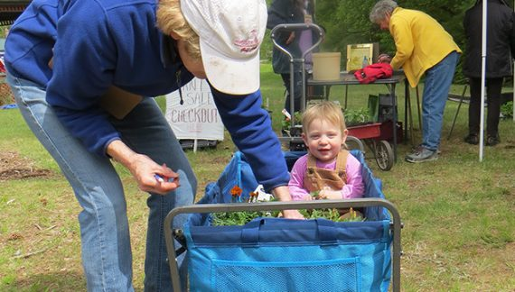 Wilmot Garden Club Plant Sale Finishes Before Rain