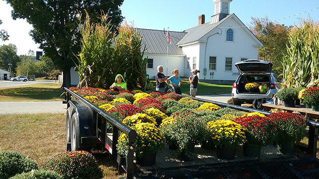 Mums Sold to Benefit 8th Grade Trip
