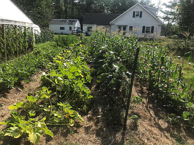 Couple Turn Andover Home Into Sustainable Farm and Bakery