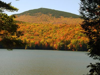 Fall Photo Captures Bradley Lake Foliage With all its Bright October Hues